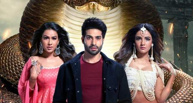 Naagin 4 Spoiler Update: Nayanthara's sizzling dance to trap Parekh boys