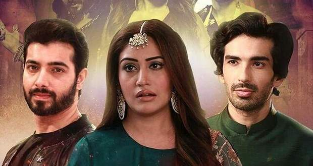 Naagin 5 Latest Spoiler: Bani to get saved by Veer