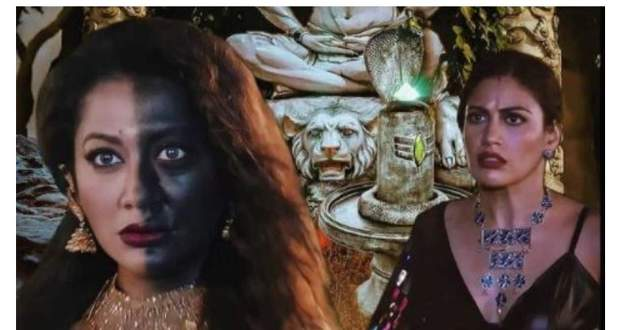 Naagin 5 29th November 2020 Written Update: Bani gets to know Maarkat's power